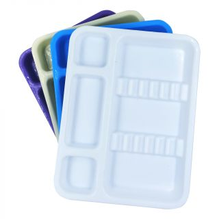 Instrument Tray Plastic Small - Apex